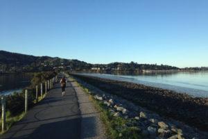 Runner on burm next to San Francisco Bay, Marin County